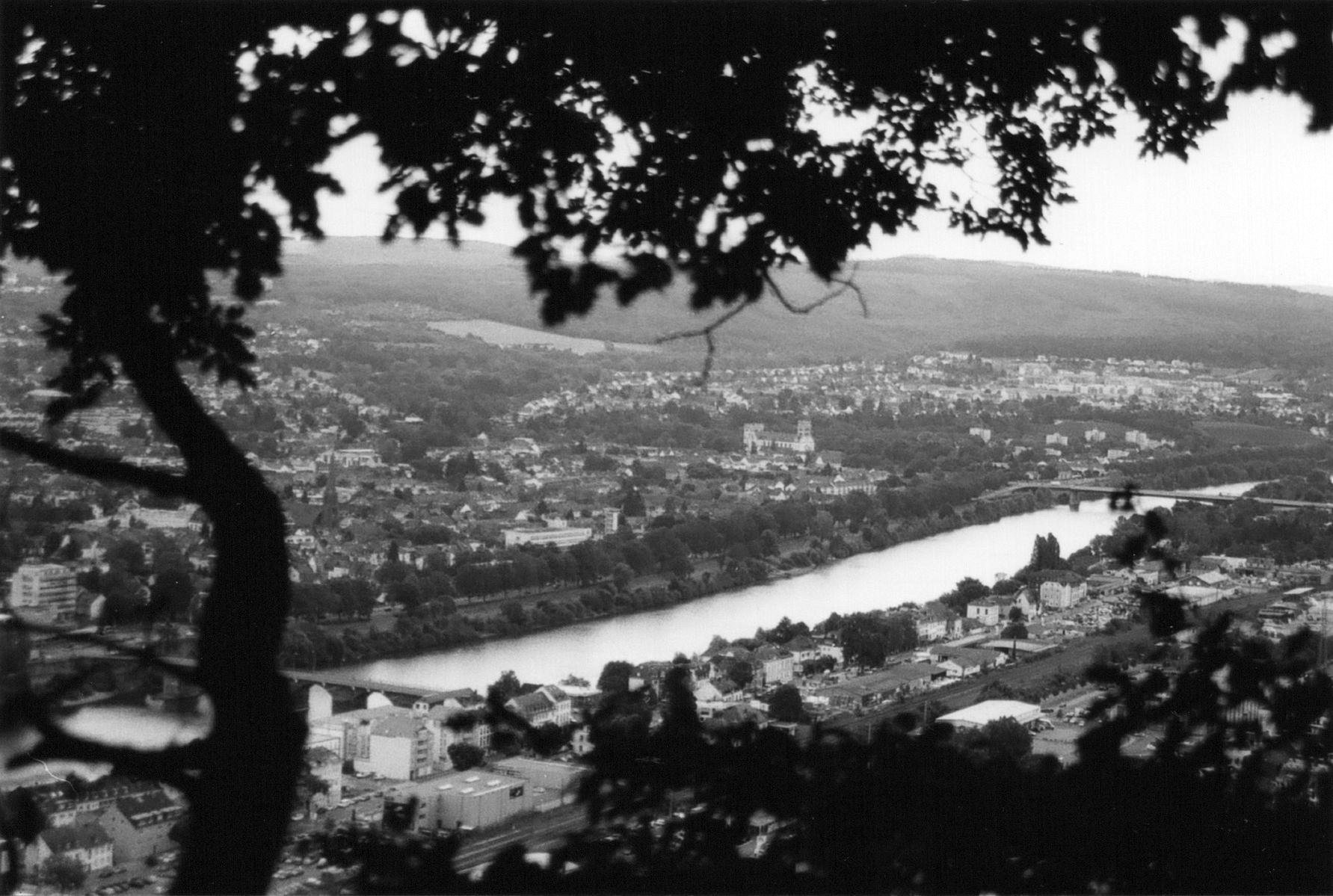 Black and white picture of the German city Trier from above. Through the canopy of a tree the view is onto the Mosel, the river. You can see two bridges and the city fading in grey.